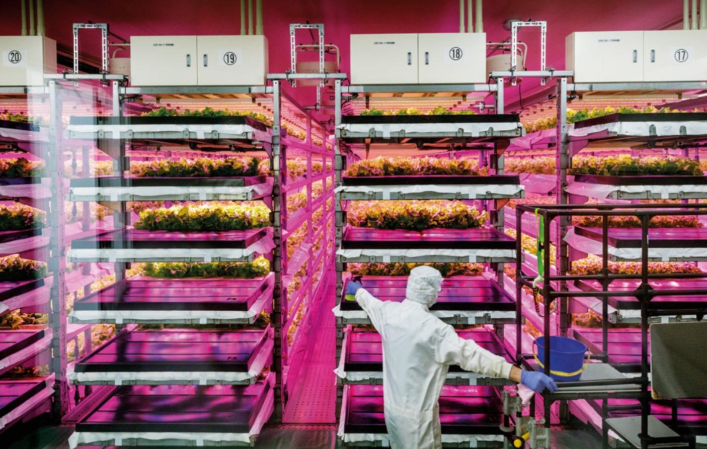 Nuevos tiempos para la seguridad y calidad alimentaria