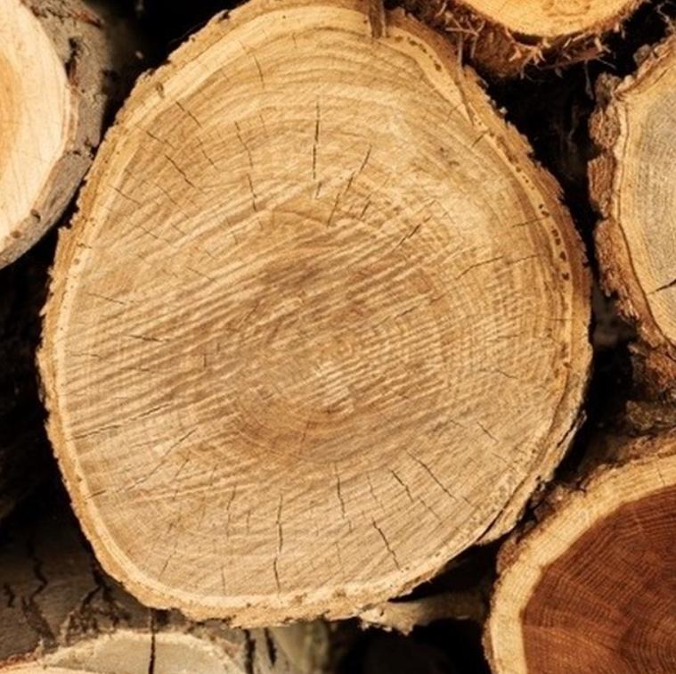 seguridad y ventajas de la madera en la construcción