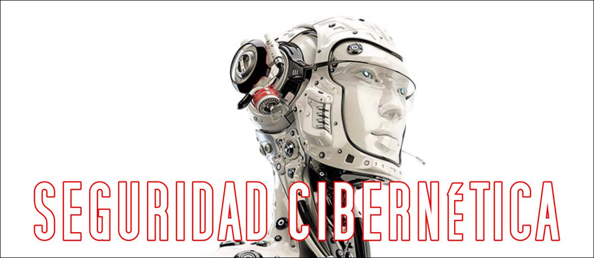 la seguridad cibernética y los cyborg seguros